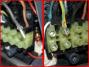 Collegamenti elettrici ferro da stiro